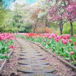 Ładny ,a także uporządkowany ogród to zasługa wielu godzin spędzonych  w jego zaciszu w trakcie pielegnacji.